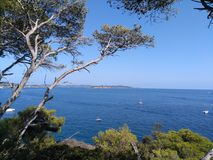 Vacation ambience. View from Port-Cros island with Bagaud island took under mediterannean pine tree Royalty Free Stock Images