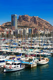 View of Port with many yachts. Alicante Royalty Free Stock Photo