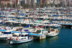 View of Port with yachtst. Alicante Royalty Free Stock Images