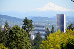 View of Portland and Mt Hood from Portland's Rose Garden Stock Photo