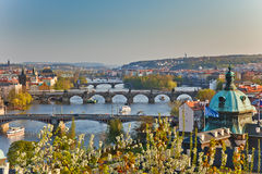 View on Prague. At sunset Stock Photos