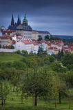 View of the Prague Castle Stock Image