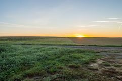 View of the prairies of Gaume at sunrise Stock Photos