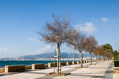 Promenade of Palma de Mallorca Stock Photography