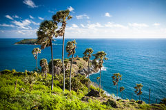 View from Promthep Cape, Phuket, Thailand. Seaview & palm trees at Promthep Cape, the southernmost point in Phuket, Thailand Royalty Free Stock Images
