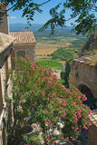 A view of Provencal countryside. Stock Image