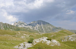 View of the Prutash mountain, Montenegro. View of the Prutash mountain in Durmitor national park, Montenegro Royalty Free Stock Images