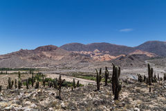 View from Pucara de Tilcara Stock Photo