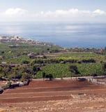 View of Puerto de la Cruz Royalty Free Stock Photography