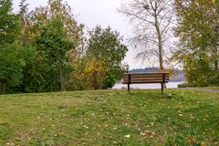 Park bench in fall. View of the puget sound from manicured fall park Stock Image