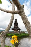 Pura Ulun Danu temple on a lake Beratan on cloudy day with green grass and a yellow flower foreground at Bali, Indonesia. View of Pura Ulun Danu temple on a stock photography