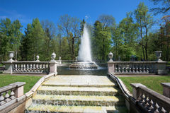 View of the Pyramid Fountain in Peterhof park on a sunny May day Royalty Free Stock Photography
