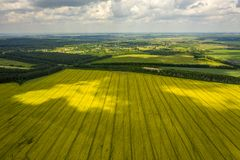 View from the quadrocopter on the field of flowering rapeseed with intricate patterns of clouds floating in the sky royalty free stock image