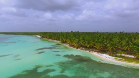 View from quadrocopters to the island with large palm trees and bathing people stock video footage