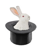 A view of a rabbit in a top hat stock images