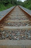 VIEW OF RAILWAY TRACKS LINED BY COASTAL VEGETATION Stock Image