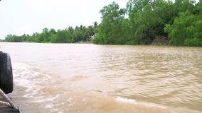 View of the rainforest and riverbank from Vietnamese boat sailing on the Mekong River in the Mekong Delta, Vietnam