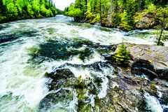 Bailey`s Chute, a narrow section in the Clearwater River, in Wells Gray Provincial Park. View of the rapids in Bailey`s Chute, a narrow section in the swollen Royalty Free Stock Photography