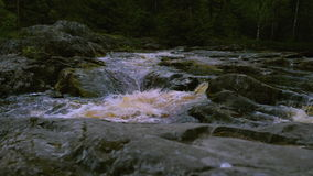 View on rapids of raging river stock video footage