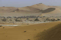 View of red dunes in the Namib Desert, Sossusvlei, Namibia Royalty Free Stock Photography