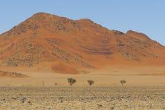 View of red dunes in the Namib Desert, Sossusvlei, Namibia Stock Image