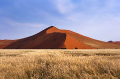 View of the red dunes in Sossusvlei, Namibia. Africa stock photo