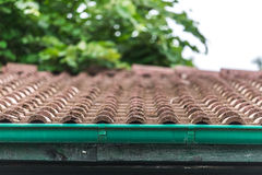 View of red roof tiles and sky and tree on the background Stock Image