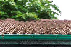 View of red roof tiles and sky and tree on the background Royalty Free Stock Photography