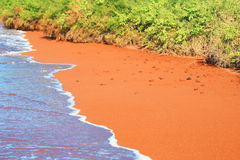 View of the red sand beach, Galapagos National Park, Ecuador Royalty Free Stock Images