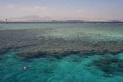 View of the red sea in Egypt royalty free stock photography