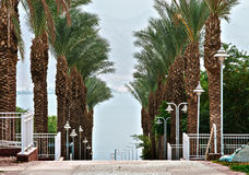 View on the Red Sea from Eilat, Israel Royalty Free Stock Images