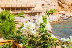 View of the Red Sea and southern white flowers at the resort of Sharm El Sheikh in Egypt Royalty Free Stock Images