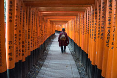 View of Red Tori Gate at Fushimi Stock Image