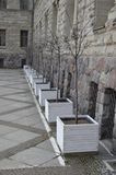 White pots with trees at imperial castle in Poznan. View of regular row of white pots at Imperial Castle facade in Poznan, Poland stock photo