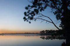 View of reservoir on sunrise sky background. Silhouette tree on sunrise sky background Stock Images