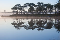 View of reservoir on sunrise sky background. Silhouette tree on sunrise sky background Stock Photos