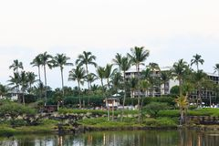 Palm Trees on the Lake. View of the resort from the beach, with a small lake and palm trees royalty free stock images