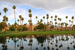 View of Resort with Palms. In Palm Springs, California Royalty Free Stock Photos