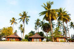 View of Resorts with coconut trees on the beach Royalty Free Stock Photo