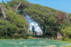 View at the rest camp at Storms River Mouth Stock Photography