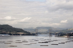 View of the Ria de Vigo Royalty Free Stock Photos