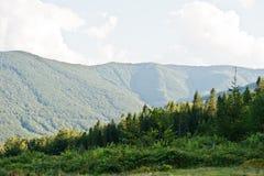 View of the ridge Carpathian mountains on west Ukraine. / stock image