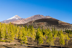 View on ridge of Teide, Pico Viejo volcanoes and Samara mountain Stock Photography