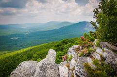 View of the Ridge and Valley Appalachians from Tibbet Knob, in G Stock Photos