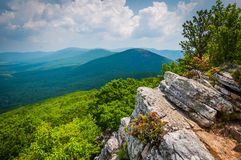 View of the Ridge and Valley Appalachians from Tibbet Knob, in G Stock Images