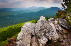 View of the Ridge and Valley Appalachians from Tibbet Knob, in George Washington National Forest, Virginia royalty free stock images