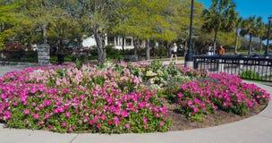 Downtown Charleston South Carolina Park Stock Photography