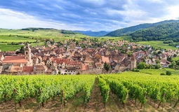 View of Riquewihr village in Alsace Royalty Free Stock Photos