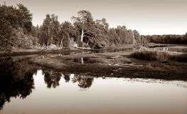 View of the river Royalty Free Stock Images