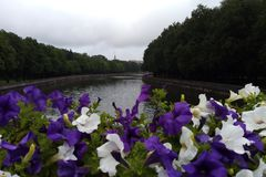 View of the river from the bridge in the foreground of petunia stock photography